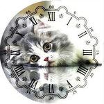 Diamond Painting pakket - Klok met liggende kat 40x40 cm