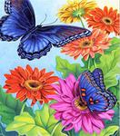 Diamond Painting op Frame - Twee blauwe vlinders met bloemen 25x30 cm (Partial)