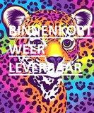 Diamond Painting pakket - Gekleurd luipaardje 25x30 cm (full)_