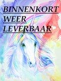 Diamond Painting pakket - Eenhoorn met regenboog 40x53 cm (full)_