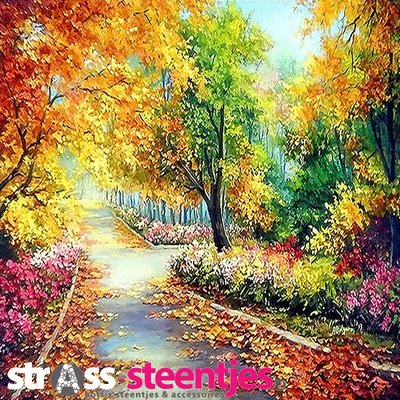 Diamond Painting pakket - Park in herfstkleuren 50x50 cm (full)