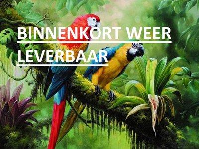 Diamond Painting pakket - 2 Ara's papegaaien in het oerwoud 40x30 cm (full)