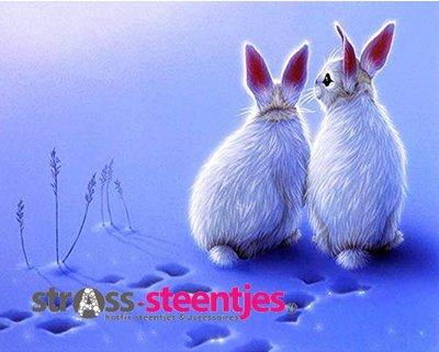 Diamond Painting pakket -  2 witte konijntjes in de sneeuw 45x35 cm (full)