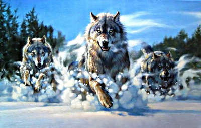 Diamond Painting pakket - Wolven in de sneeuw 55x35 cm (full)