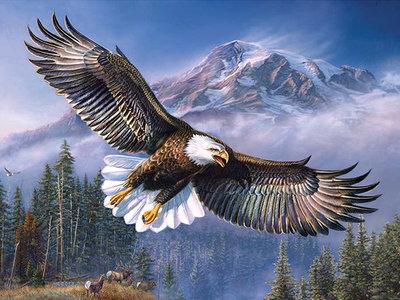 Diamond Painting pakket -  Adelaar met zijn vleugels uitgespreid voor een berg 60x45 cm (full)