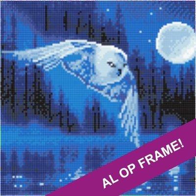 Full Diamond Painting op Frame - Uil bij volle maan 30x30 cm