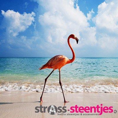 Diamond Painting pakket - Flamingo op het strand 35X35 cm (full)