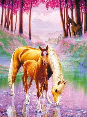 Diamond Painting pakket - Drinkend paard met veulen in het bos 40x55 cm  (full)