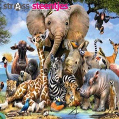 Diamond Painting pakket - Groepsfoto van wilde dieren 35X35 (full)