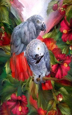 Diamond Painting pakket - Grijze roodstaart papegaaien tussen rode bloemen 25x40 cm (full)
