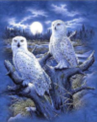 Diamond Painting pakket - 2 sneeuwuilen voor de maan 38x48 cm (full)