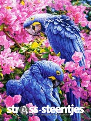 Diamond Painting pakket - Blauwe ara papegaaien tussen roze bloemen 30x40 cm (full)