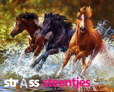 Diamond Painting pakket - 3 paarden galopperend door het water 60X50 cm (full)
