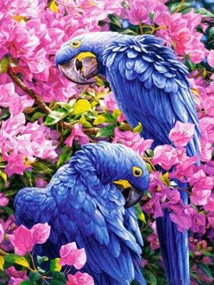 Diamond Painting pakket - Blauwe ara papegaaien tussen rose bloemen 30x40 cm