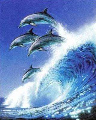 Diamond Painting pakket - Springende dolfijnen boven een hoge golf 30X38 (full)