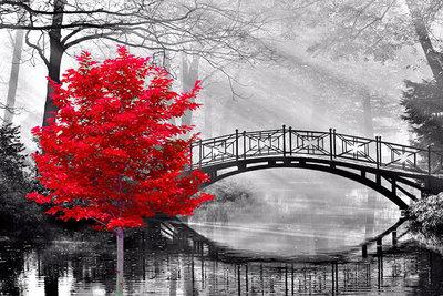 Diamond Painting pakket - Rode boom bij een sierlijke brug in een park 45x30 cm (full)