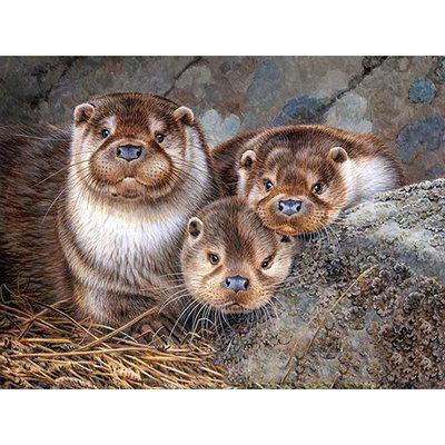 Diamond Painting pakket - 3 Nieuwsgierige otters 40x30 cm (full)