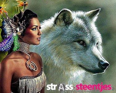 Diamond Painting pakket - Indiaan met bloemen, veren en wolf in kleur 50x40 cm