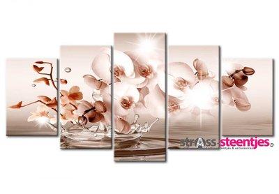 Diamond Painting pakket - Orchidee 5 luik 2x20x30, 2x20x40, 1x20x50 cm (full)