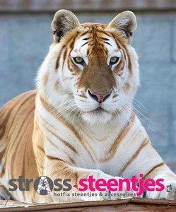 Diamond Painting pakket - Bruin-witte liggende tijger 55X65 cm (full)