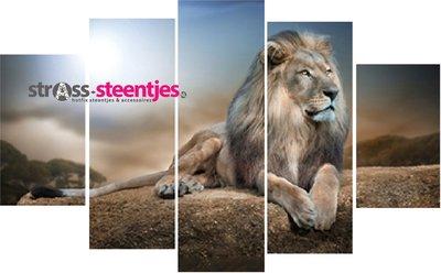 Leeuw liggend op een rots 5 luik 2x20x35, 2x20x55, 1x20x65 cm