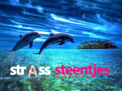 Diamond Painting pakket - Springende dolfijnen boven de zee 30x40 cm