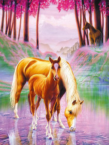Diamond Painting pakket - Drinkend paard met veulen in het bos 40x55 cm