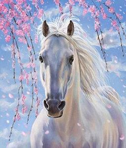 Wit paard onder een bloesemboom 35x42 cm