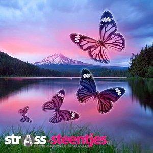 Diamond Painting pakket - Vier vlinders boven een bergmeer 45x45 cm (full)