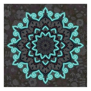 Diamond Painting pakket - Mandala met witte bloemetjes - Glow in the Dark in het donker 30x30 cm (Partial)