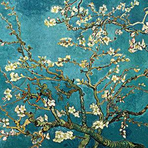 Van Gogh Almond Blossom 40x40 cm