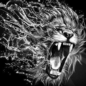 Aanvallende leeuw in zwart-wit 30x30 cm
