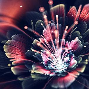 Diamond Painting pakket - Lichtgevende bloem met springend stuifmeel 40x40 cm (full)