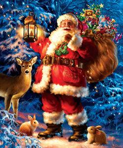 De kerstman met een zak cadeaus en dieren in het bos 25x30