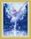 Diamond Painting pakket - Ballerina met speciale vormstenen 40x50 cm (Special)
