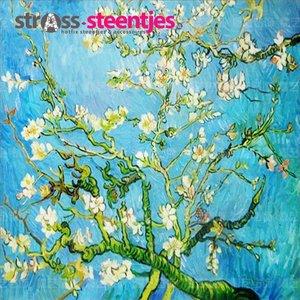 Diamond Painting pakket - Moderne Van Gogh Almond Blossom 40x40 cm (full)