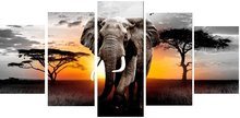 Diamond Painting pakket - Olifant 5 luik 2x20x30, 2x20x40, 1x20x50 cm (full)